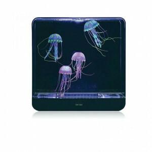 Grote Vierkant Kwallen Aquarium