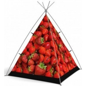 Wigwam Strawberry Surprise - Little Camper